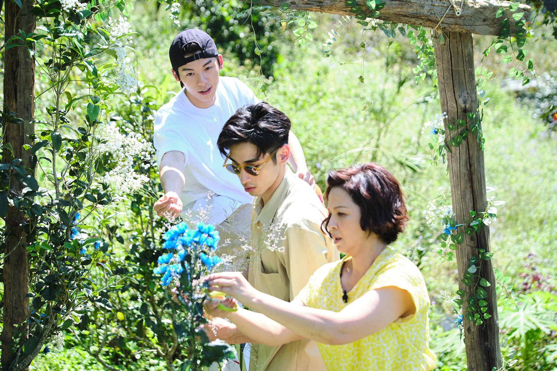 楊貴媚經營民宿舉辦同志婚禮,讓實境節目增添教育意義