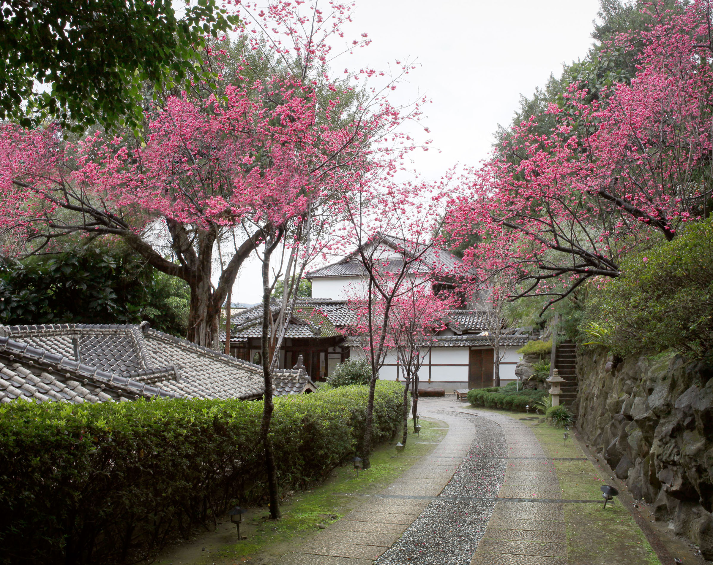 一秒到京都!悠遊北投文物館,不用出國也能置身日式典雅風情中