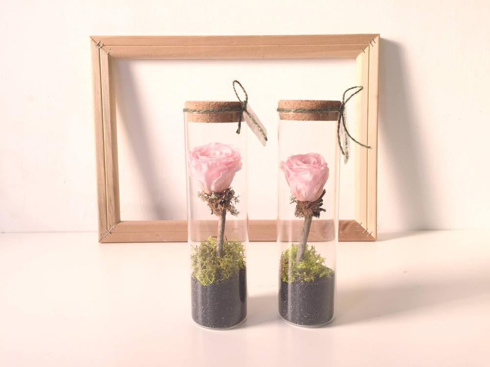 美栽,植物療癒養成計劃—享生活Feng